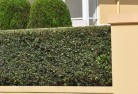 Aberfoyle Privacy screens 30